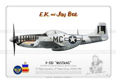 """P-51D """"Mustang"""" """"E.K. and Jay Bee"""" USAAF PP-04"""
