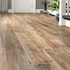 Youll love the Legacy 8 x 47 Porcelain Wood Look Tile at Wayfair  Great Deals on all Home Improvement products with Free Shipping on most stuff even the big stuff. Oak Laminate Flooring, Refinishing Hardwood Floors, Engineered Hardwood Flooring, Vinyl Plank Flooring, Best Flooring For Basement, Wood Look Tile, Ceramic Subway Tile, Flooring Options, Types Of Flooring