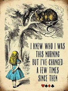 Alice In Wonderland Quote Enchanting Painting Sketch Cute Little Alice And Cheshire Cat I Knew Who I Was This Morning But Ive Chanced A Few Times Since Then