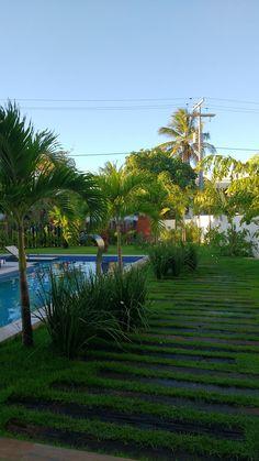 JARDIM ACESSO: Jardins tropicais por Tânia Póvoa Arquitetura e Decoração