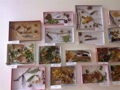 PS - Tableaux d'automne chez Isabelle L - (couvercles boîtes à chaussures) Autumn Crafts, Autumn Art, Environmental Art, Land Art, Natural World, Toddler Activities, Science Nature, Fall Decor, Art For Kids