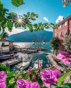 "🌟🌟🌟DIVINE_LADOLCEVITA🌟🌟🌟 on Instagram: ""Places I long back to ❤️ Garda Location #limonesulgarda October 20 2020 Founder @boyephotografy Photo selected by Gunnel…"""