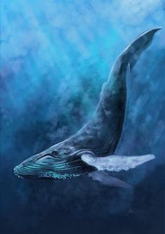 Waterfall Paradise Ocean Fish Whale and Sea Turtle Wall Picture 8x10 Art Print