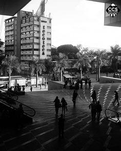Te presentamos la selección del día: <<FOTO DEL DIA>> en Caracas Entre Calles. ============================  F E L I C I D A D E S  >> @jean.nx << Visita su galeria ============================ SELECCIÓN @marianaj19 TAG #CCS_EntreCalles ================ Team: @ginamoca @huguito @luisrhostos @mahenriquezm @teresitacc @marianaj19 @floriannabd ================ #Caracas #Venezuela #Increibleccs #Instavenezuela #Gf_Venezuela #GaleriaVzla #Ig_GranCaracas #Ig_Venezuela #IgersMiranda…