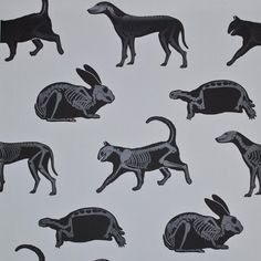 PaperBoy Wallpaper | 'Animal Magic' Gray & Black | Australia | USA – JUST KIDS WALLPAPER™
