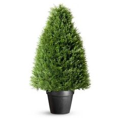 These artifical topiaries look so real you may be tempted to trim them, but you'll never have to. Each faux topiary keeps it shape indoors or out. These ornamental topiary trees are perfect by your front door or in a dining room.