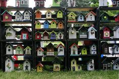 Lots of Birdhouses