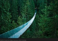 Capilano Suspension Bridge North Vancouver, British Columbia, Canada I have walked this bridge and it is an exhilarating scene. The Bridge stretches 450 feet across and 230 feet above Capilano River. Would go back to Vancouver any time--love that place! Beautiful Places In The World, Places Around The World, The Places Youll Go, Places To See, Around The Worlds, Amazing Places, Amazing Photos, Wonderful Places, Beautiful Things