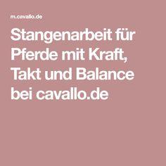 Stangenarbeit für Pferde mit Kraft, Takt und Balance bei cavallo.de