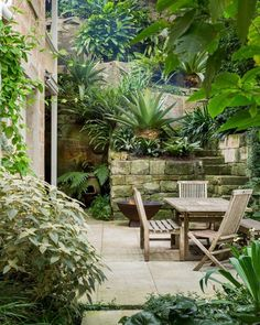 Michael Bates designed the luscious garden of his sandstone home in North Sydney. He augmented the existing plantings and made the space functional and more optimal for entertaining. He chose a focused selection of plants with broad leaves. Tropical Backyard Landscaping, Modern Landscaping, Tropical Garden, Landscaping Ideas, Backyard Plants, Modern Landscape Design, Garden Landscape Design, Small Gardens, Outdoor Gardens