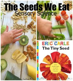 Sensory nature science for kids- The Seeds We Eat. Great for Eric Carle's Tiny Seed book.