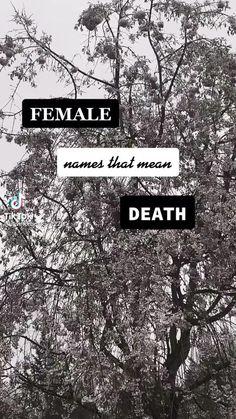 Writing Promps, Book Writing Tips, Writing Words, Fiction Writing, Creative Writing, Female Character Names, Female Names, Name Inspiration, Writing Inspiration