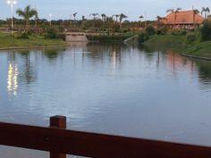 vista desde uno de los puentes