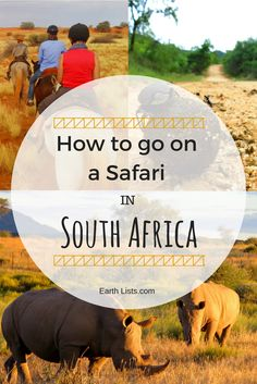 """Want to know all the different ways you can go on Safari in South Africa? In this """"How to"""" guide, you will learn the top 6 ways of safaring."""