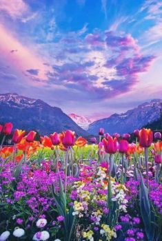 Solve Mountains And Flowers Jigsaw Puzzle Online With 35 Pieces Spring Landscape Photos Spring Landscaping Spring Landscape