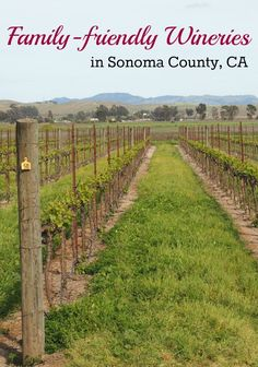 A selection of family friendly wineries in Sonoma California -- plus some tips on finding kid-friendly wineries