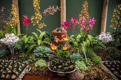 Tropical themed Mesa de doces!