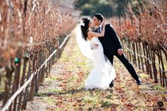 The vines are still great for wedding photos even in the middle of winter when there are no leaves or grapes. {Photo by Bustle & Twine}