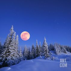 Winter Landscape in the Mountains at Night. A Full Moon and a Starry Sky. Carpathians, Ukraine Premium Poster