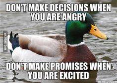 Old school helpful mallard advice