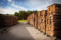 http://www.megiw.pl Woodworking #woodworking