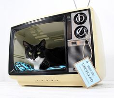 Retro TV Cat Bed so cute www.finditforweddings.com