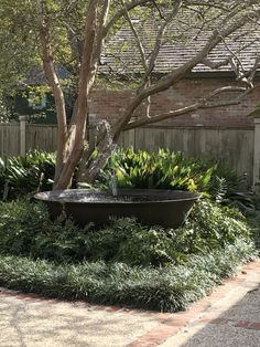 this water feature in a sigar kettle with grass and fern plantings is so tranquil water feature in a sigar kettle with grass and fern plantings is so tranquil Back Gardens, Outdoor Gardens, Garden Fountains, Fountain Garden, Succulents In Containers, Water Features In The Garden, Garden Cottage, Plantation, Water Garden