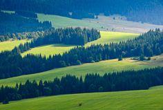 Liptov - Veľké Bobrové, Slovakia Forest Mountain, Bratislava, Czech Republic, Prague, Roots, Cities, Beautiful Places, Scenery, Places To Visit