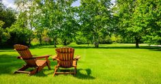 Does your lawn look dead and dying or filled with brown grass instead of green? Restore your lawn to lush, living beauty with these five easy steps. Big Backyard, Backyard Landscaping, Backyard Ideas, Foyers, Grass Seed For Shade, Lawn Care Schedule, Landscape Design Program, Lawn Repair, Lush Lawn