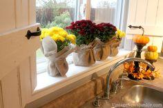 Fall Decor: Kitchen Window Mums