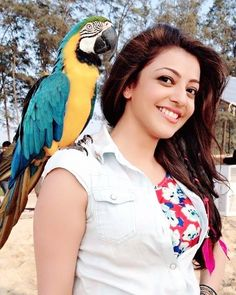 Love u Kajal Agrwal Bollywood Actress Hot, Beautiful Bollywood Actress, Most Beautiful Indian Actress, Beautiful Actresses, South Actress, South Indian Actress, Best Actress, Beautiful Heroine