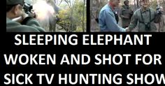 PLEASE SIGN & SHARE! President .@BarackObama  :  STOP Entitled Americans killing the last of the AFRICAN ANIMALS for TV HUNTING FUN