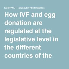 What Is Egg Donation & How Does it Work? | Pinterest | Egg ...