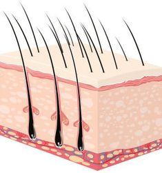 Extreme eyelash and eyebrow growth - the official EMMA test - EMMA Eyebrow Makeup Tips, Makeup Eye Looks, Eye Makeup, Beauty Make Up, Hair Beauty, Eyebrow Growth Serum, Beauté Blonde, Makeup For Older Women, Beauty Hacks Skincare