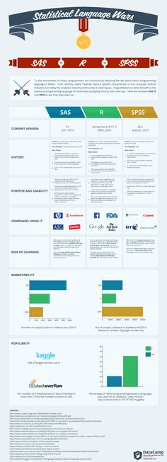 Statistical Programming Languages Infographic
