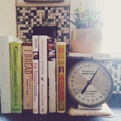 scale as bookend/plant holder
