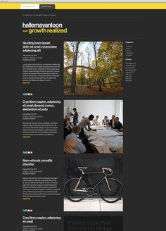 HallemaVanLoon - Website development