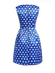 Lips Print Sleeveless Aline Dress With Back Zipper img