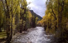Stream near Redstone, Co.