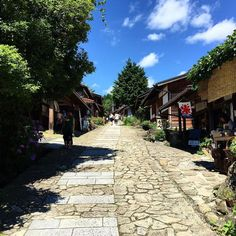 Зимой приятно вспомнить жаркое и солнечное японское лето. Старинный альпийский тракт Накасэндо в сезон цветения гортензии. #цумаго #магомэ #японскиеальпы #мидокоро #Япония #улицы #глубинка #туризм #хайкинг #горы #тракт #Нагано