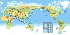 This map showing the migration patterns of early humans was designed as a precursor to the National Geographic Society's Genographic Project, which will provide more detailed data.