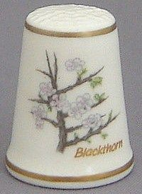 Royal Grafton Thimble - Flowers of the Poets Collection - Blackthorn