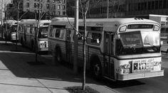 Newspaper in Toledo, Ohio Toledo Ohio, 40th Anniversary, Altars, Buses, North America, Transportation, Saints, History, Board
