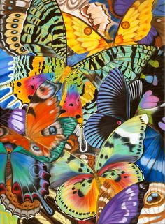 Butterfly Wings of the World butterfly art by Lucy Arnold Photo Wall Collage, Picture Wall, Collage Art, Photo Backgrounds, Wallpaper Backgrounds, Photocollage, Collage Vintage, Butterfly Wings, Monarch Butterfly