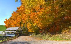 Covered bridge in the fall... nice!