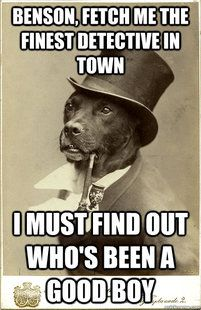 My favorite Old Money Dog meme... I must find out who's BEEN a good boy!