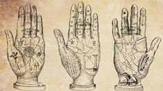 Palm reading or palmistry can be found all around the world in many different cultures. In ancient times it has been practiced in the cultures of India, Ti Basic Palm Reading, Palm Reading Charts, Indian Palmistry, Tarot, India Culture, Palm Of Your Hand, In Ancient Times, Book Of Shadows, Magick