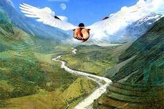 Alhos Com Bugalhos: Já Sonhou que Está Voando?