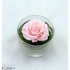 Compositions florales pour votre intérieur - Fleurs d'Un Nouveau Monde