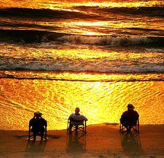 Daytona Beach, Florida, USA    sungreeters 3 (by Haley Hyatt)